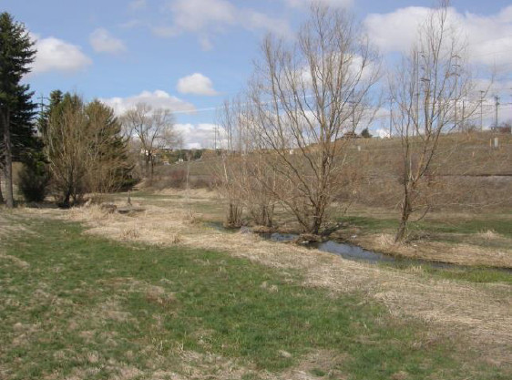 Undeveloped land for Mary's Park in Pullman